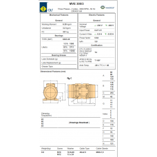 Industrial Vibration Motor MVE 300/3 2 Poles